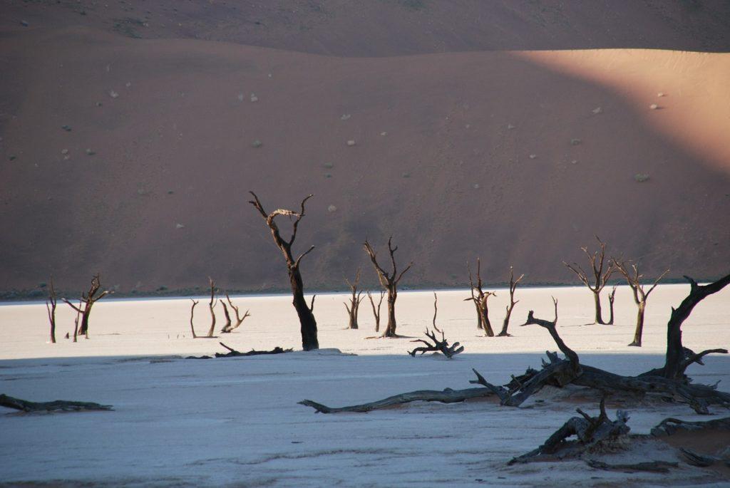 07 Day Taste of Namibia