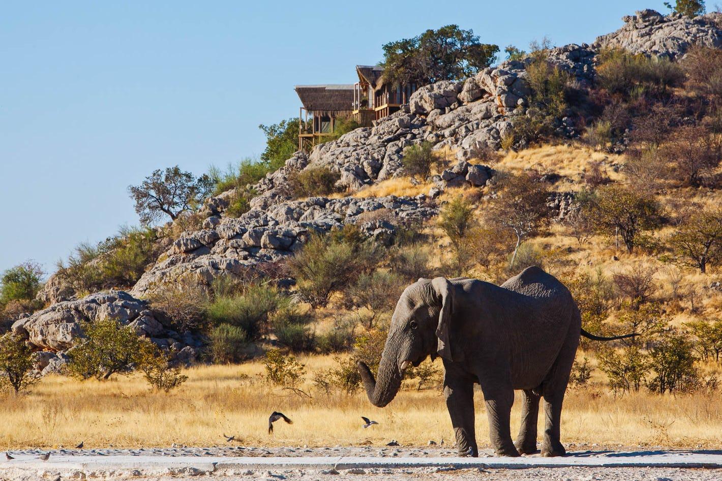 10 Day Namibia Private Tour