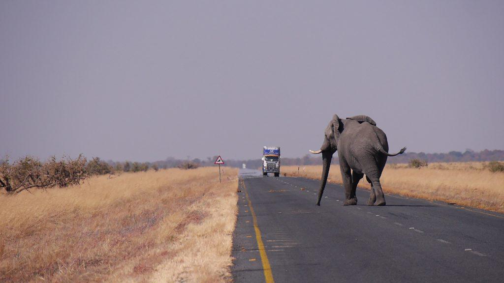 05 Day Botswana & Zambia Package Tour
