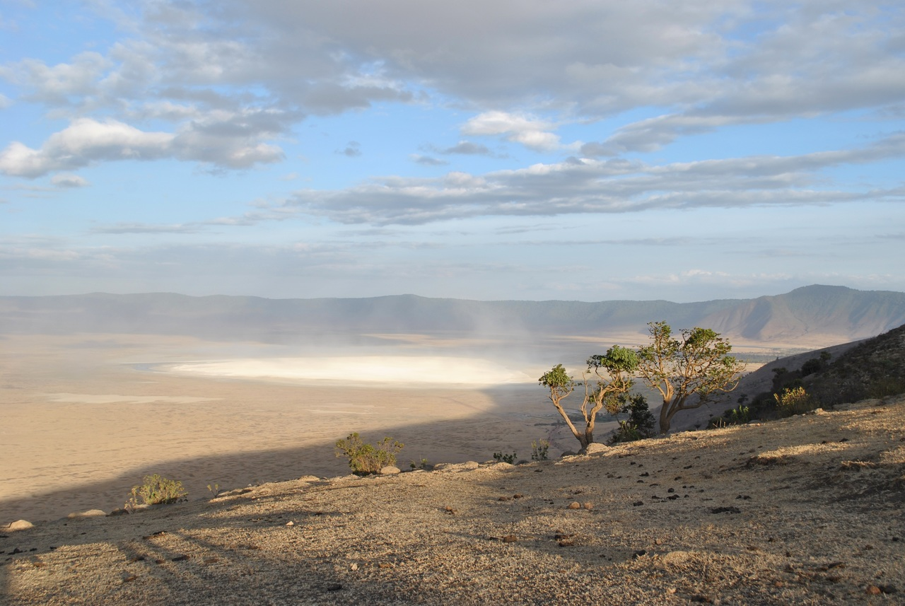 05 Day Safari in Manyara, Serengeti & Ngorongoro
